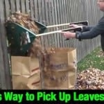 Genius Way to Pick Up Leaves FAST!