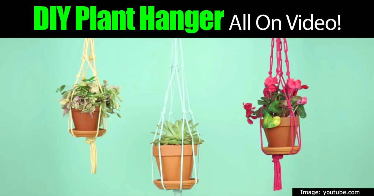 plant-hanger-93020152332