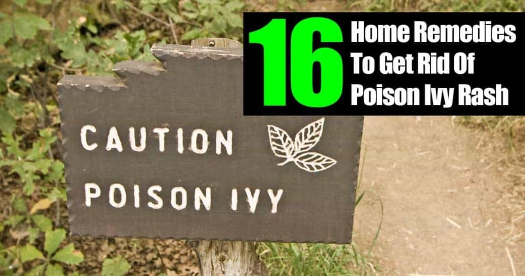 Remedies for Poison Ivy