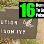 16 Home Remedies: How To Get Rid Of Poison Ivy Rash