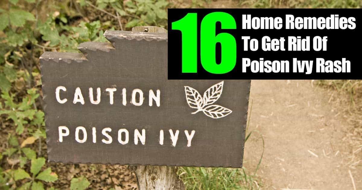 16 Home Remedies How To Get Rid Of Poison Ivy Rash