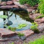 Tips For Choosing The Right Pond Liner – PreFab, EPDM, Puddling Clay?