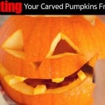 7 Ways Prevent Your Carved & Uncarved Pumpkins From Rotting
