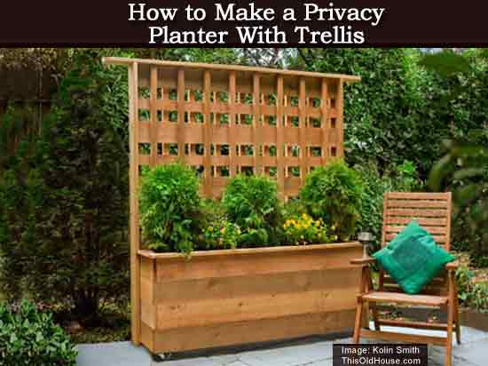 How To Make A Privacy Planter With Trellis