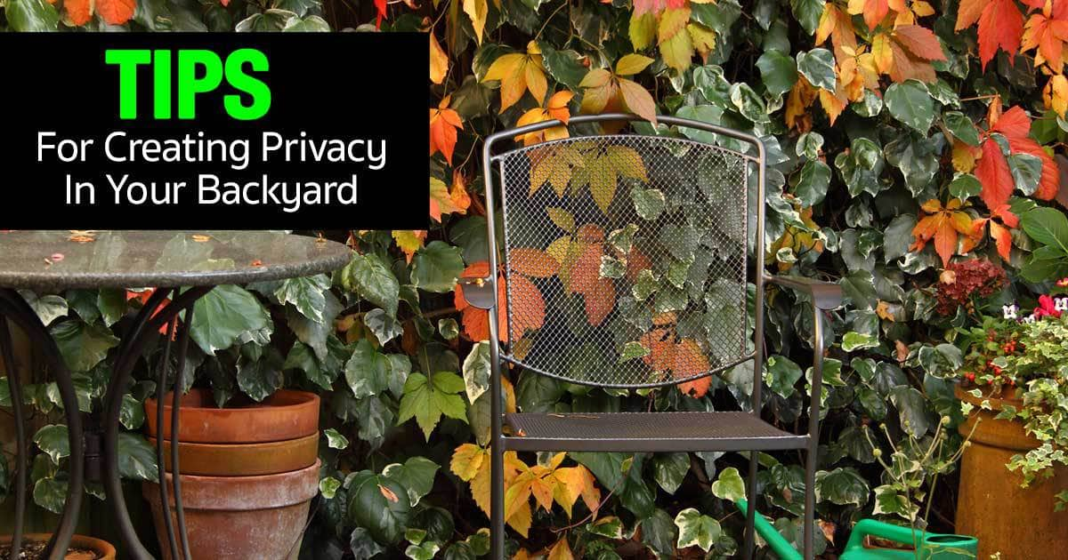 privacy-tips-backyard-08312015