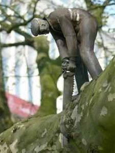 pruning-tree-man