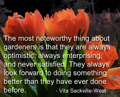 The Most Noteworthy Thing About Gardeners