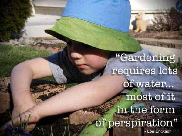 Quote: Gardening requires lots of water...