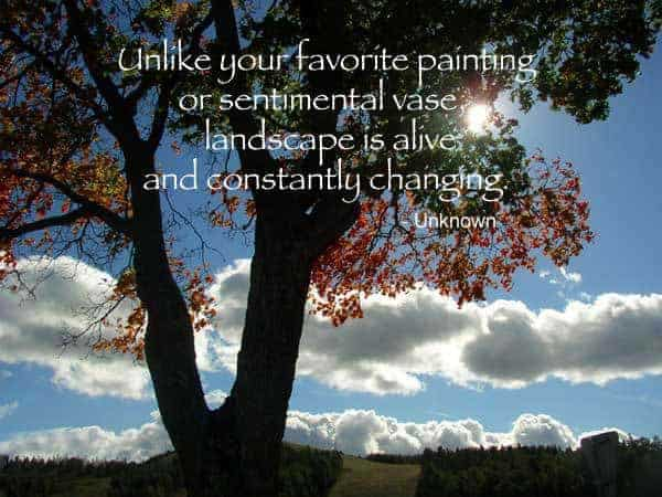 Quote - Unlike a Painting or Sentimental Vase
