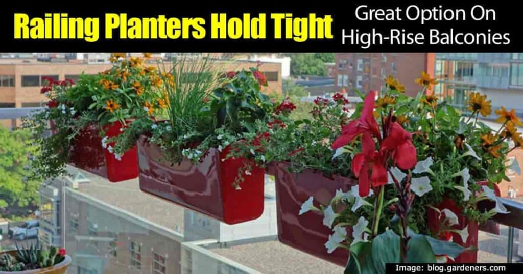 railing planters on a high rise balcony holding colorful flowers