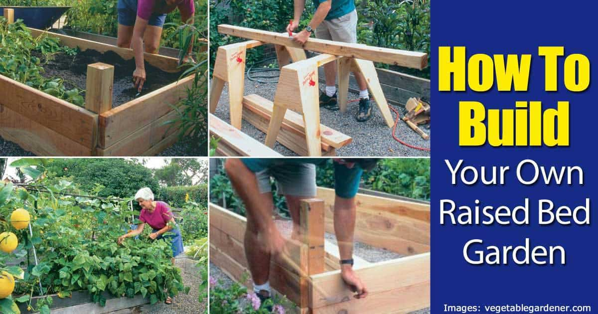 100 bed design images build raised garden beds tips for rai