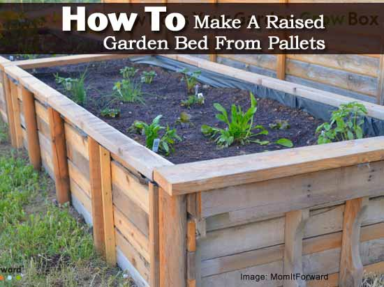 a raised building build spaces to wood gardening small best on images beds lumber garden way in for and bed pinterest
