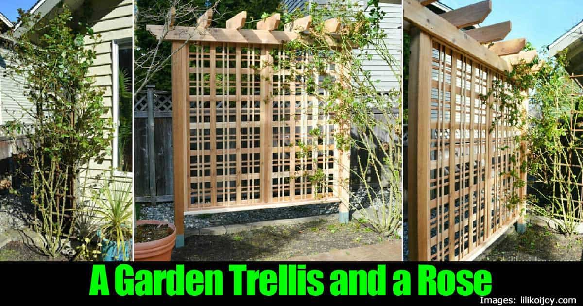 how to make a beautiful garden trellis to showcase a 30 beautiful rock garden design ideas