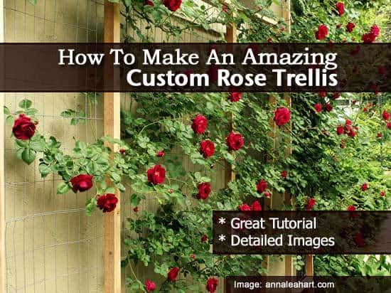 How To Make An Amazing Custom Rose Trellis