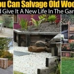 You Can Salvage Old Wood And Give It A New Life In The Garden