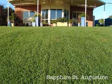 Shire St Augustine