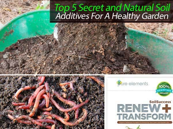 Top 5 secret and natural soil additives for a healthy - Nature s care organic garden soil ...