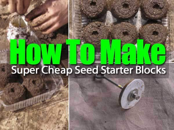 seed-starter-blocks-053114