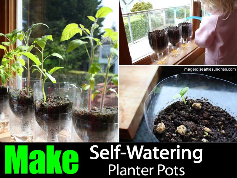self-watering-planter-063014