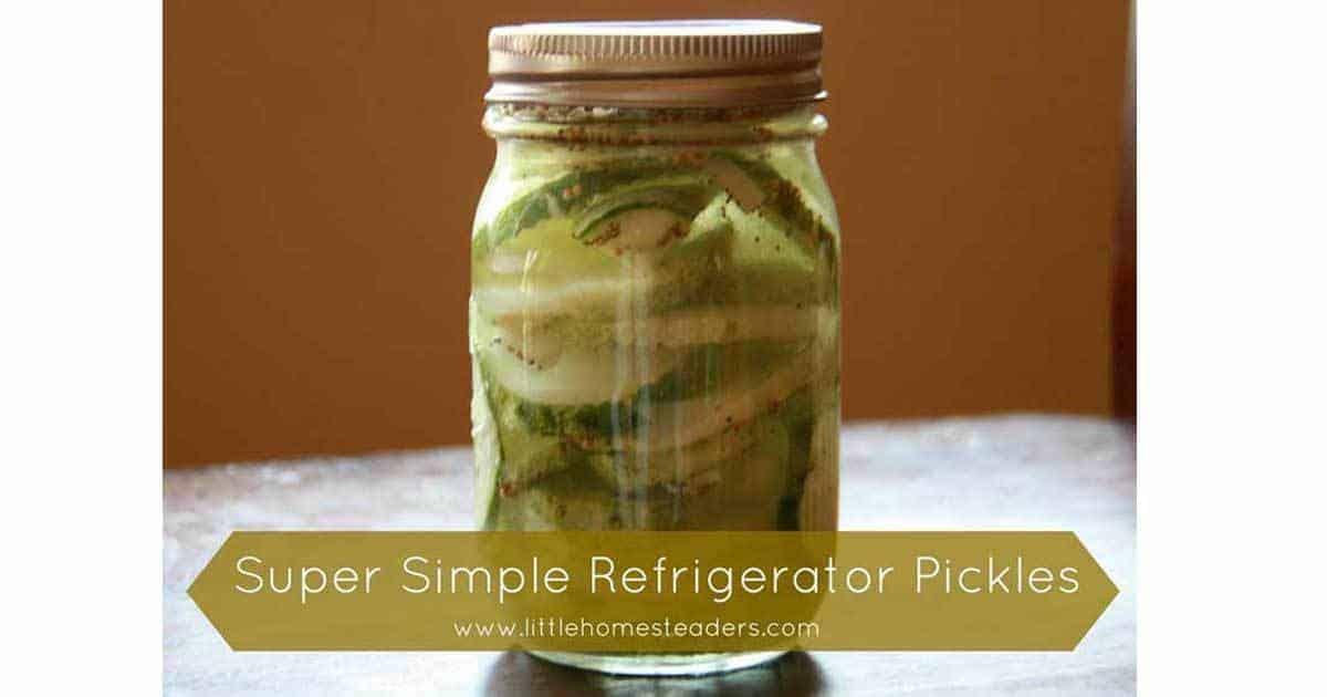 simple-pickles-09302016