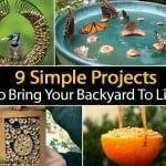 9 Simple DIY Projects To Bring Your Backyard To Life