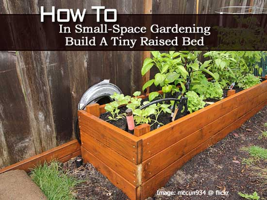 Perfect How To In Small Space Gardening: Build A Tiny Raised Bed