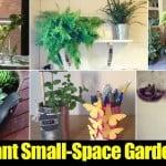 17 Brilliant Small-Space Garden Ideas