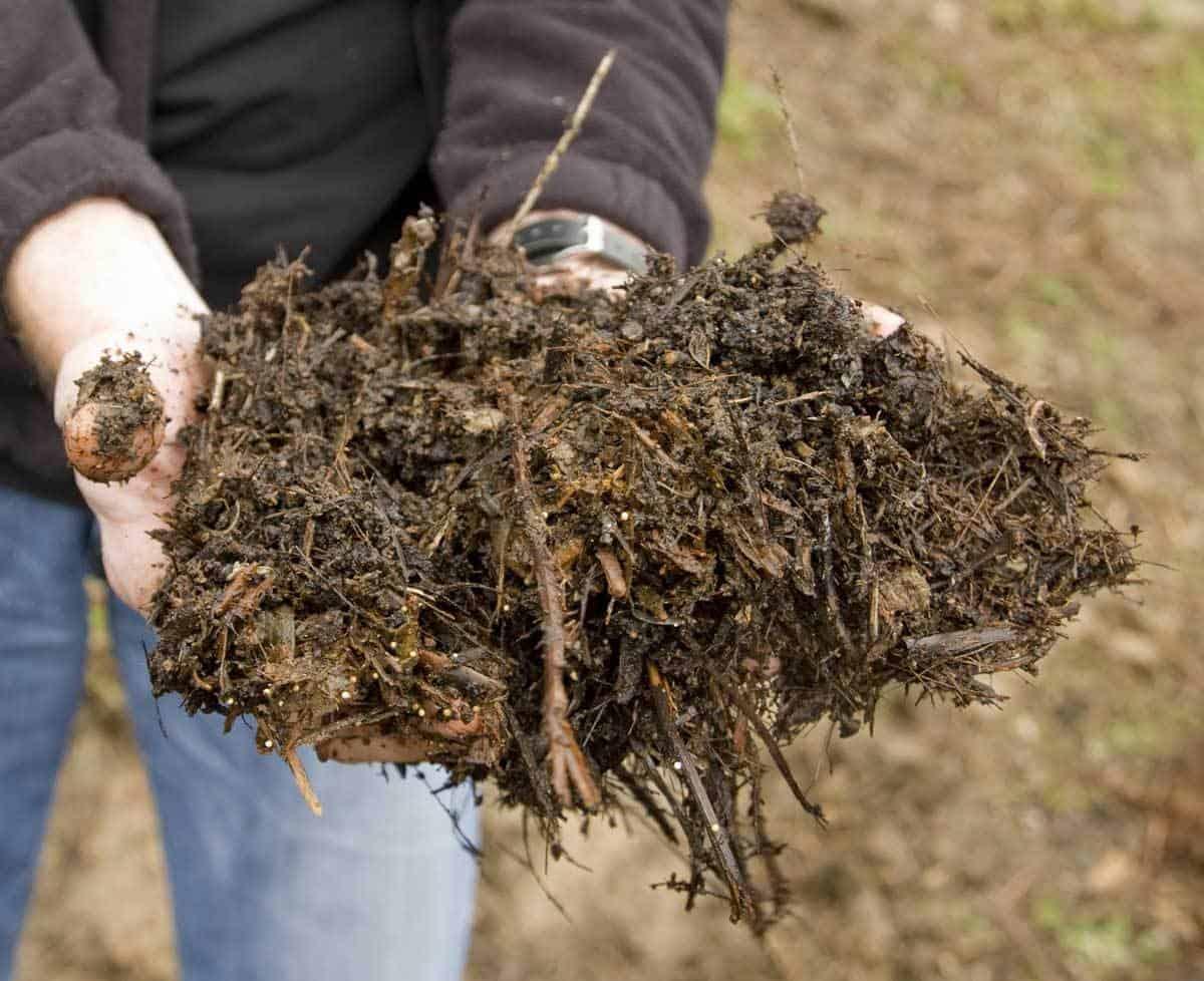 soil-amendments-compost-03-12312016