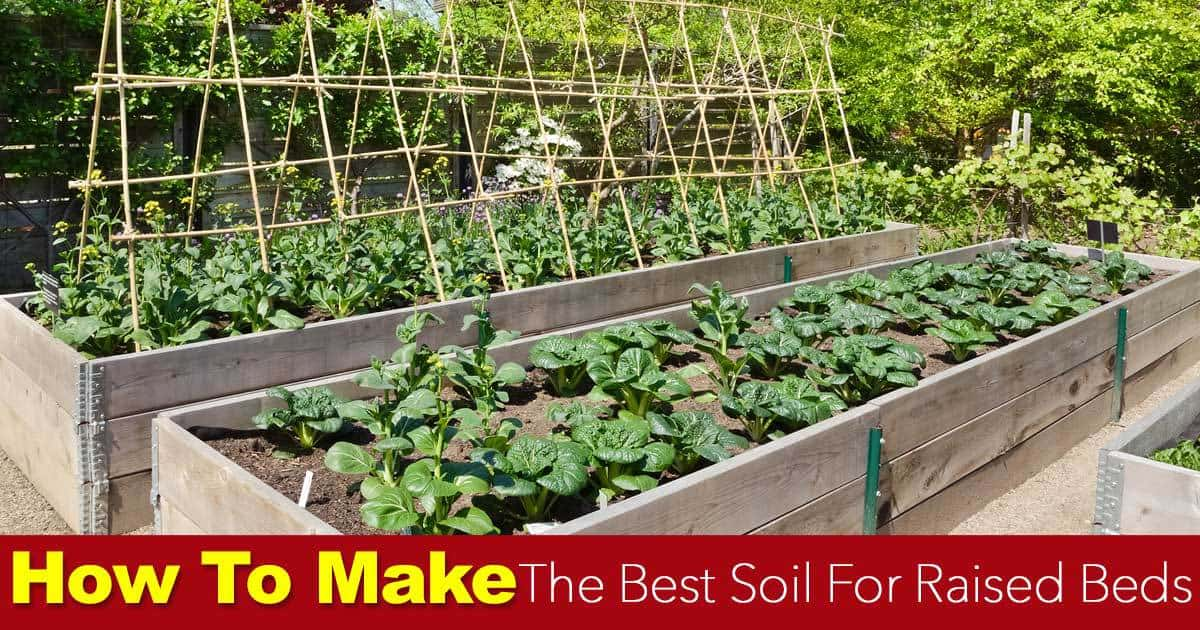 Soil For Raised Beds How To Make The Best Raised Bed Soil