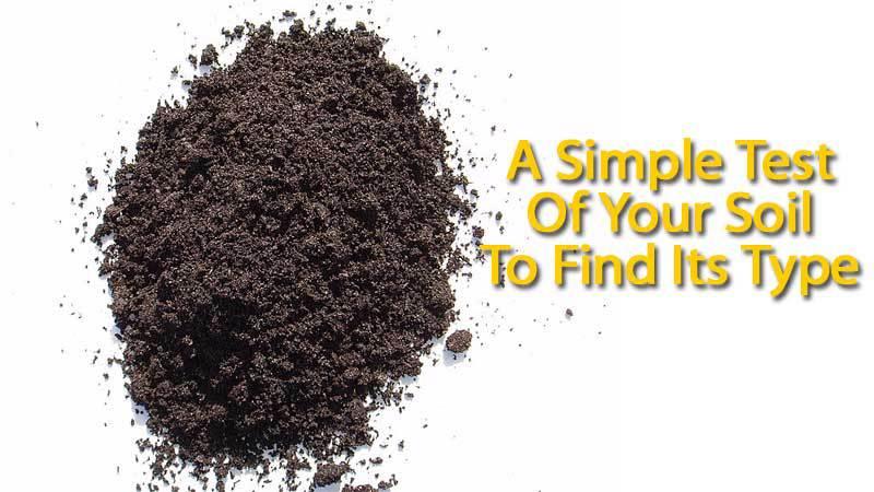 soil-test-123013