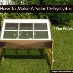 solar-dehydrator-102813