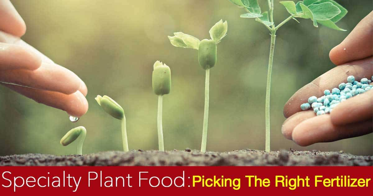 specialty plant food picking the right plant fertilizer