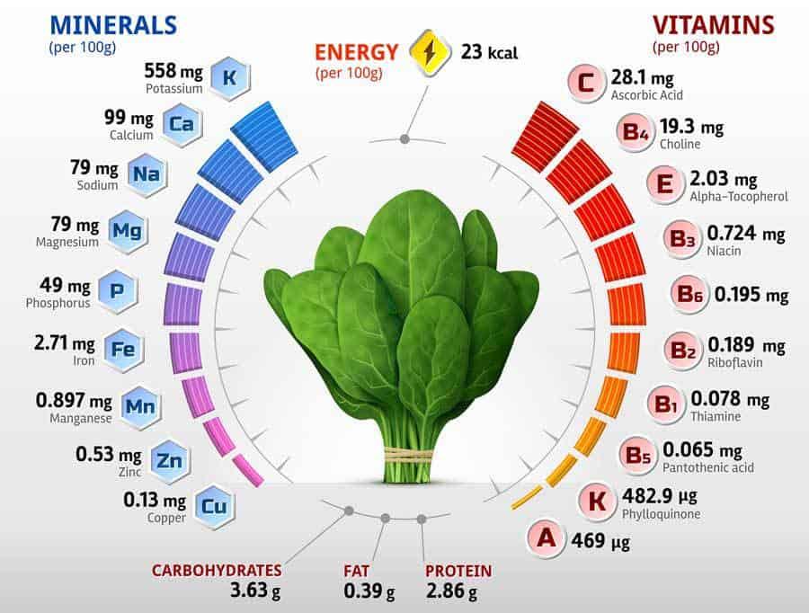spinach vitamins minerals