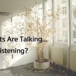 Your Plants Are Talking… Are You Listening?