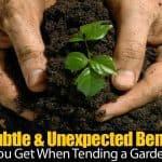 12 Subtle & Unexpected Benefits You Get When Tending a Garden
