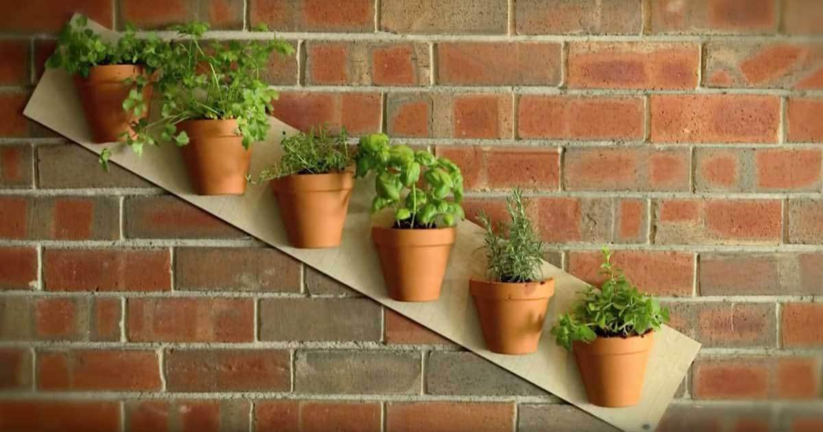 Terra cotta pot projects to spice up the garden