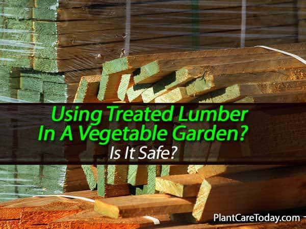 is it ok the use pressure treated wood for gardens and raised beds
