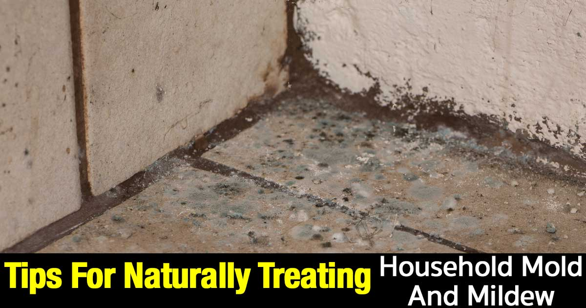 Tips For Naturally Treating Household Mold And Mildew