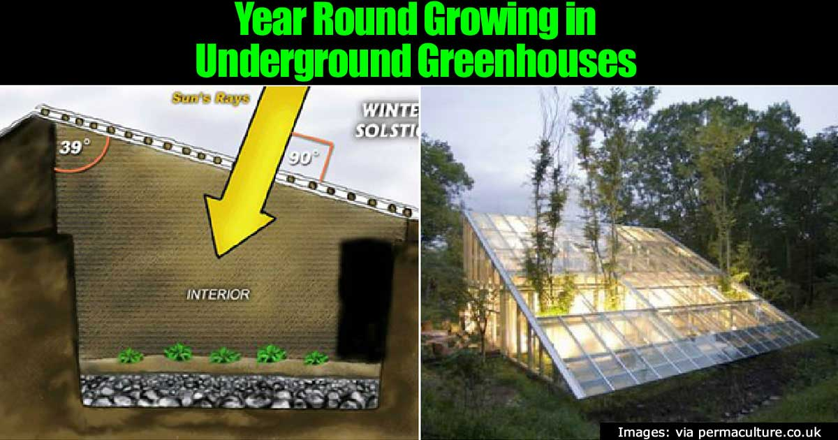 Year Round Growing In Underground Greenhouses 22820171228