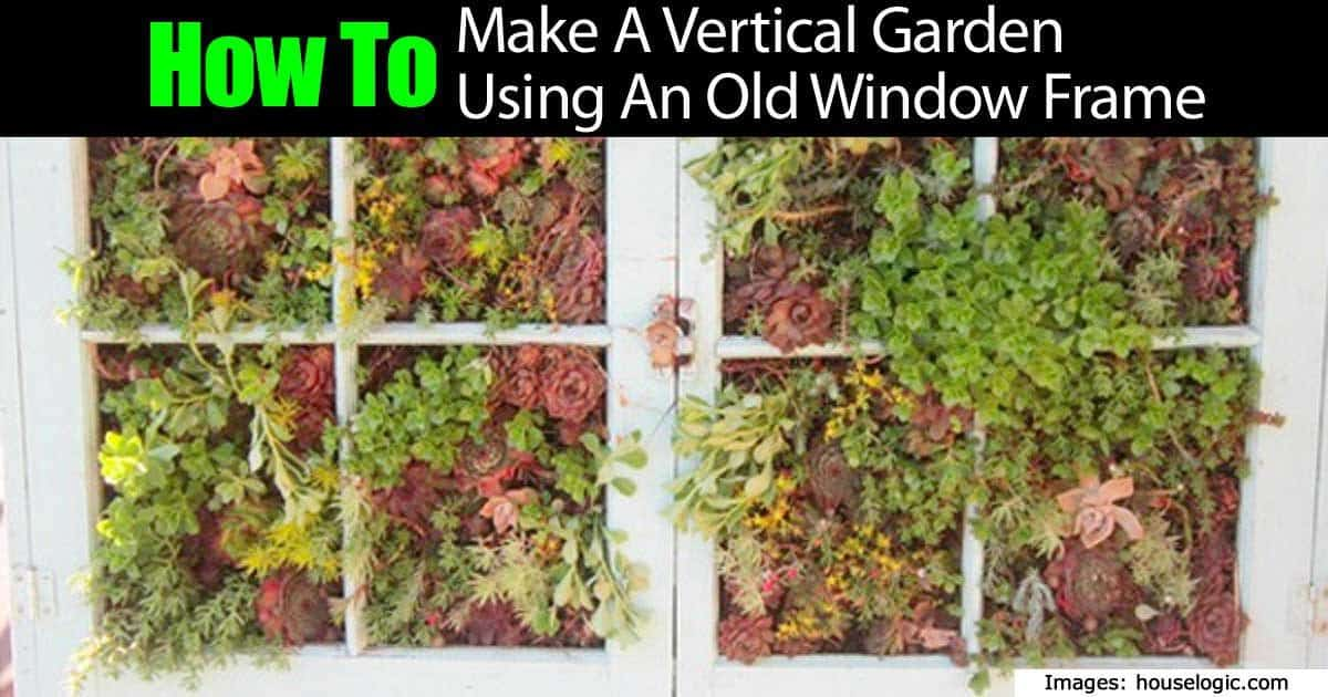 How to make a vertical garden out of an old window frame for How to make a vertical garden frame