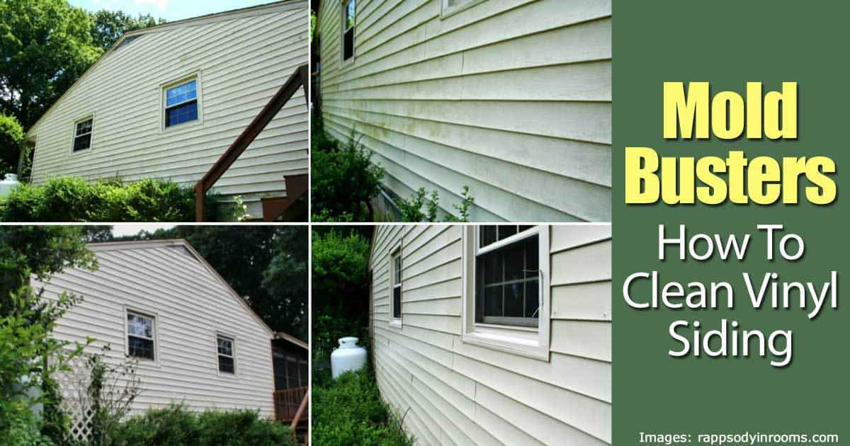 Mold Busters How To Clean Vinyl Siding
