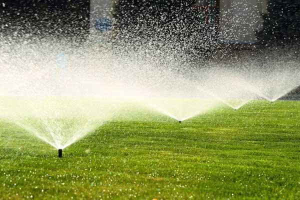 water-lawn-05312016