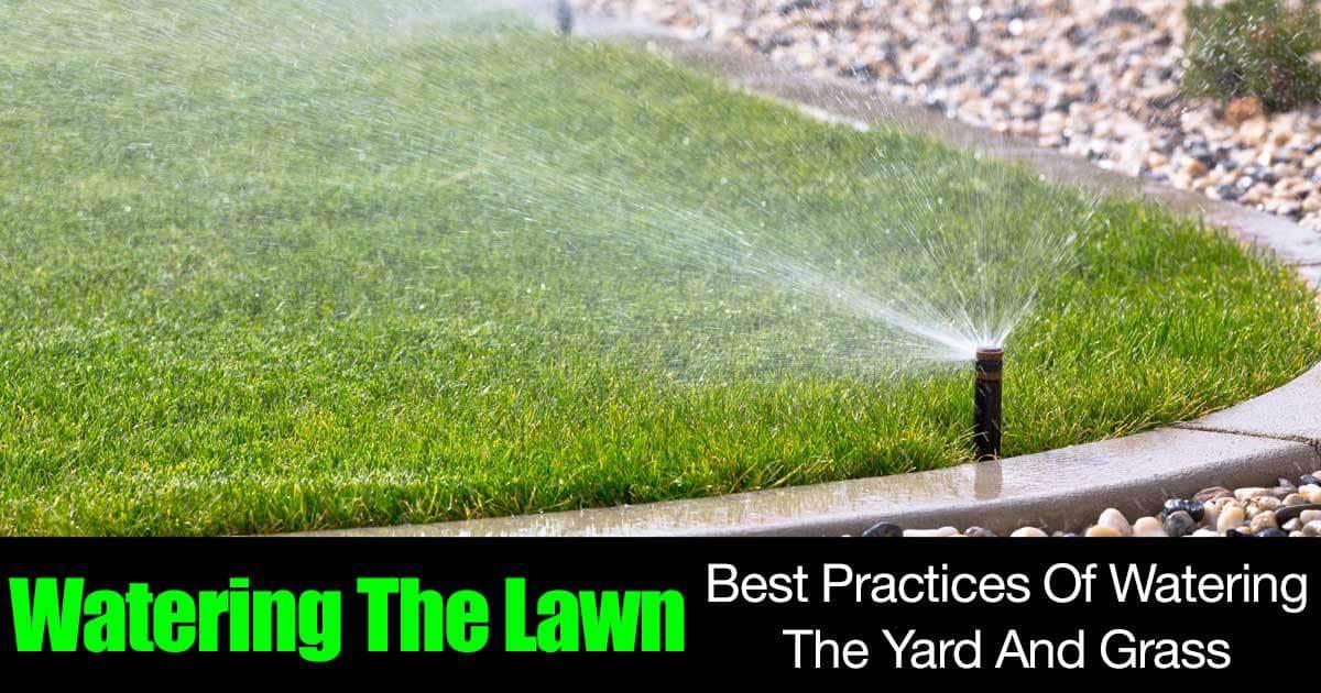 watering-grass-01312016