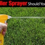 Weed Killer Sprayer – Should You Have One?