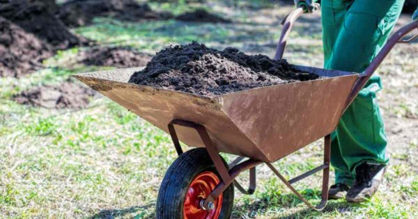 Wheelbarrow And Garden Carts Meet Different Needs Like Hauling Soil Or  Moving Lightweight Leaves