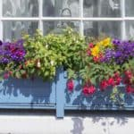 Why, When and How To Use Flower and Window Box Liners or Inserts: Plastic, Coconut
