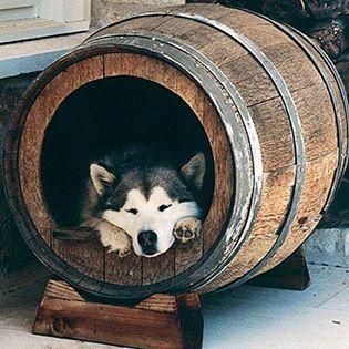 wine-barrel-uses-033114-07