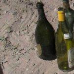 Using Glass Bottles In The Garden