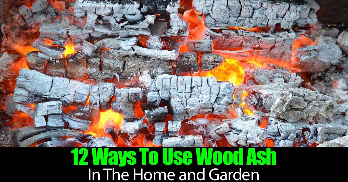 wood-ash-garden-93020151953