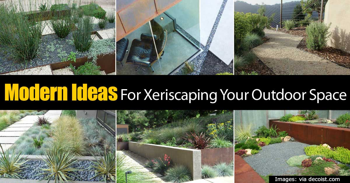 Modern Ideas For Xeriscaping Your Outdoor Space